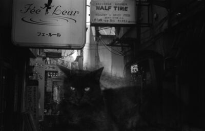 Kosuke, 'WARNING #41', 2008