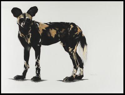 Rose Corcoran, '26. Large African Wild Dog I'