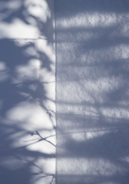 Brenda Biondo, 'Shadow Legacy no. 1', 2018