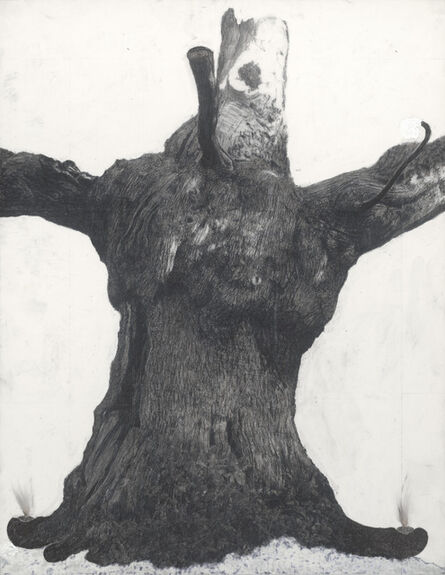 """Patrick Van Caeckenbergh, '""""Drawing of old trees on wintry days during 2007-2014""""', ca. 2007 -2014"""
