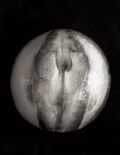 Zoë Zimmerman, 'Eclipse', 2006