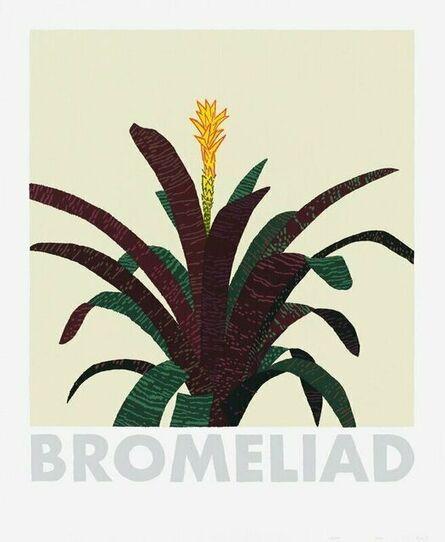 Jonas Wood, 'Bromelaid', 2020
