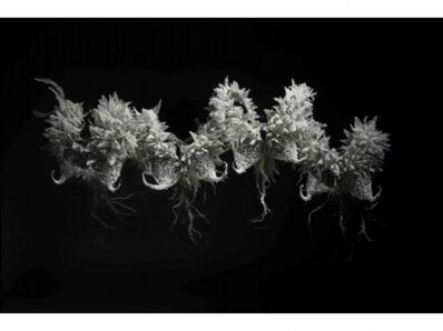 Bae Jung Soon, 'BREATH', 2011