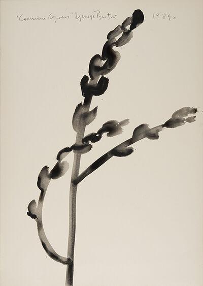 George Bartko, 'Common Grass', 1089