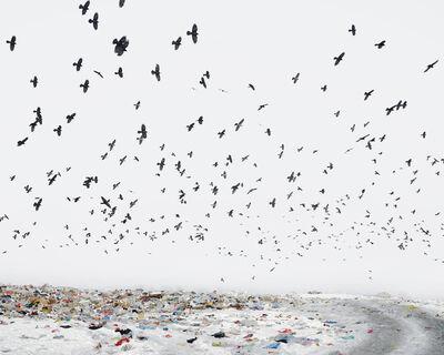 Tamas Dezso, 'Dump (Near Aiud, West Romania)', 2012