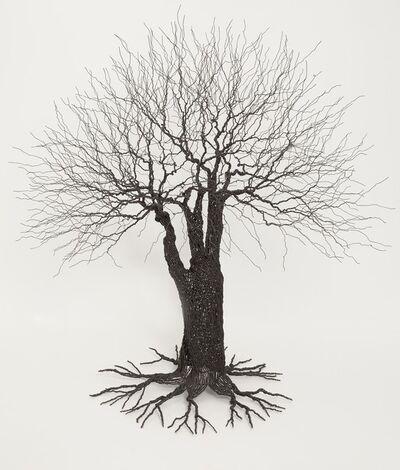 Pablo Avilla, 'Wire Tree', 2013