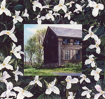 Kathleen Kolb, 'House - White Trillium', 2019