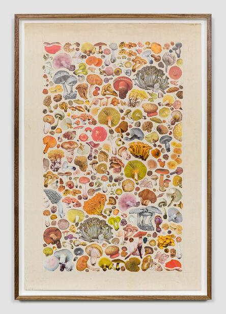 Matthew Craven, 'Proliferate', 2019