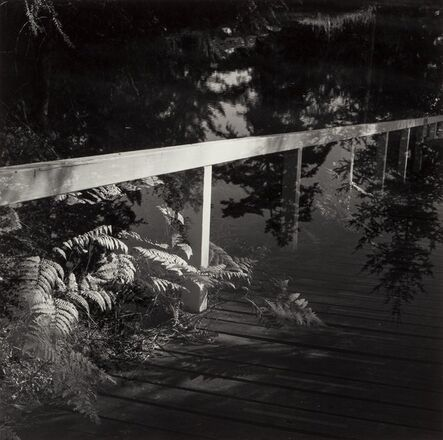 Elena Sheehan, 'Twilight', 1988