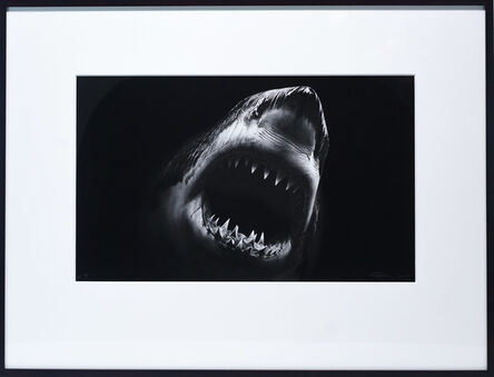 Robert Longo, 'Untitled (Bruce)', 2014