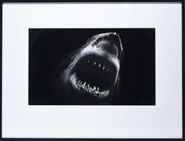 Robert Longo, 'Untitled (Bruce)', 2014