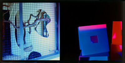 John Divola, 'Dyptichs / Untitled ', 1983