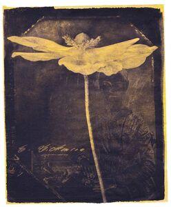Brigitte Carnochan, 'Pray Gather Me–Anemone', 2018