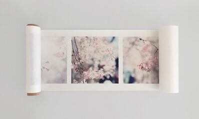 Rinko Kawauchi, 'Approaching Whiteness', 2012