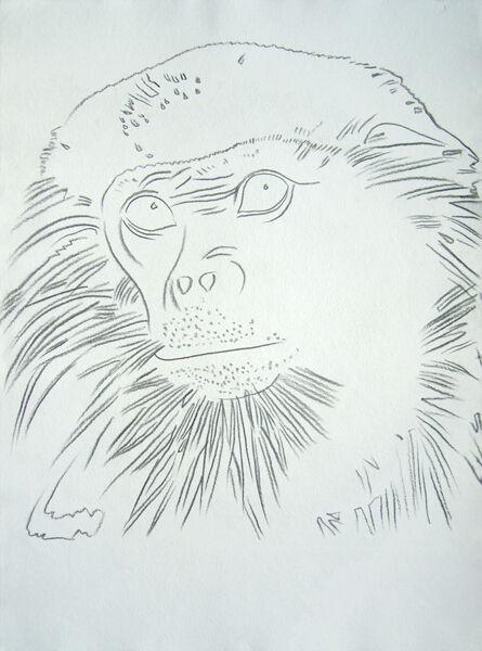 Andy Warhol, 'Vanishing Animals - Douc Langur', 1986