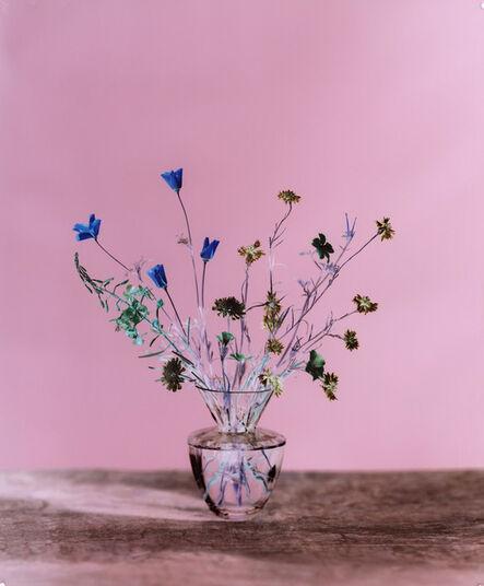 Brendan Barry, 'California poppy, common poppy, cornflower, dove's-foot crane's-bill, red campion & rosebay willowherb 2', 2020