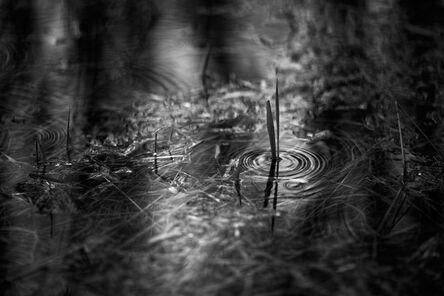Stephan Anderson-Story, 'Door County Rain', 2018