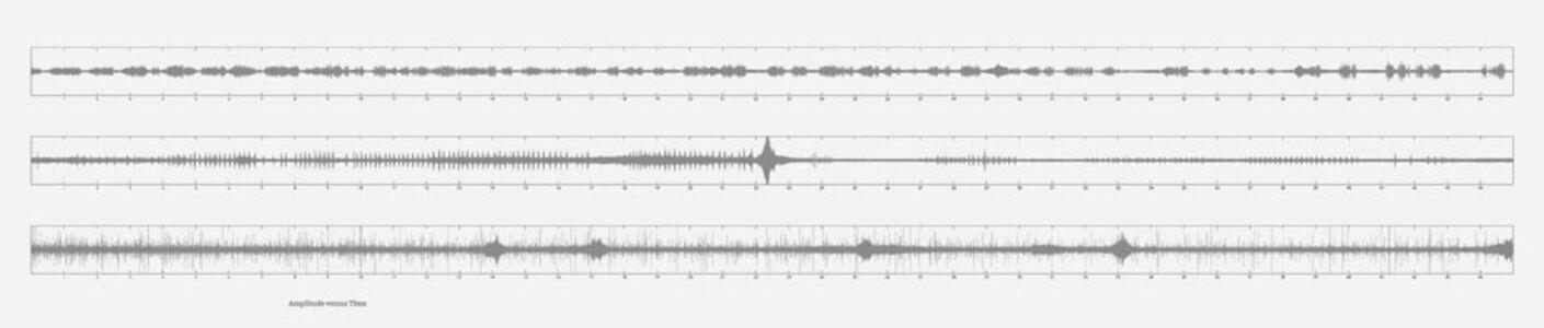 Lothar Baumgarten, 'Amplitude Versus Time', 2009