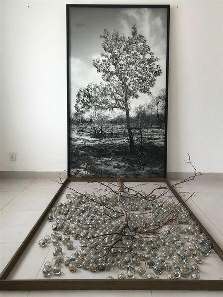 Alessandra Rehder, 'Cure ', 2020