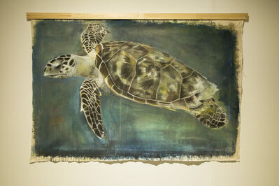 Russ Ronat, 'Hawksbill Sea Turtle', 2018