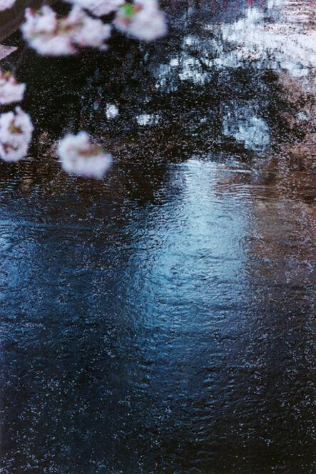 Mika Ninagawa, 'PLANT A TREE', 2011