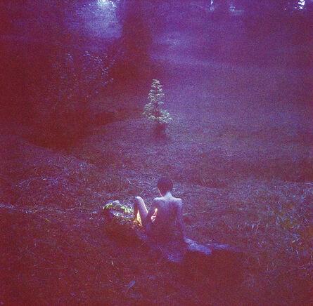 Logan White, 'Rose Hill', 2012