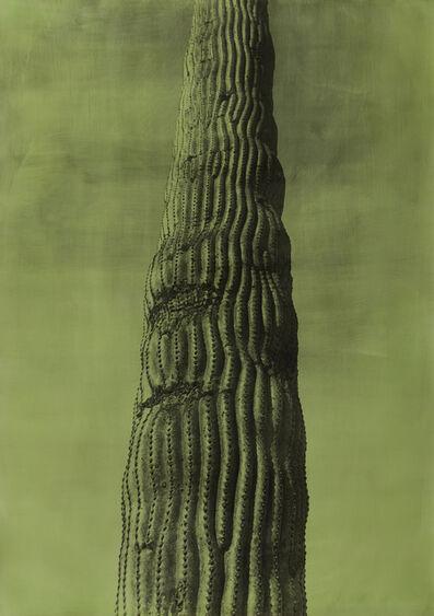 Jungjin Lee, 'American-Desert-II-94-29'