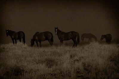 Jack Spencer, 'Wild Horses, Greenriver, Wyoming', 2007