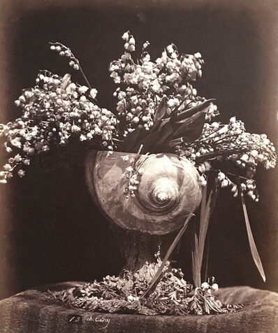 Charles Aubry, 'Lilies of the Valley in a Nautilus Shell (Muguet dans une Conque)', ca. 1864
