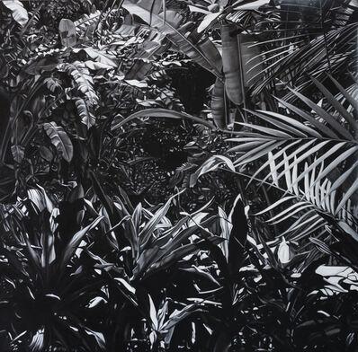 José Pedro Godoy, 'Paradise Found series', 2013