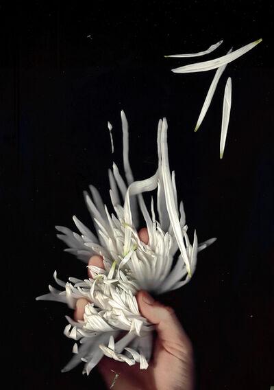 Paloma Mayorga, 'Suelta (Loose) 2', 2017