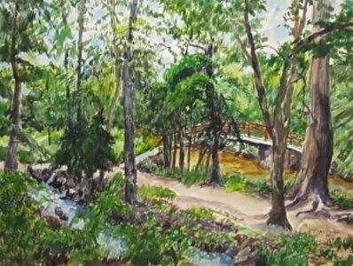 Richard Fitzhugh, 'Rock Creek Park Near Tilden Street'
