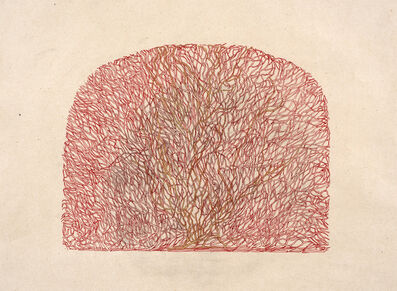 Veeda Ahmed, 'Branches in red', 2017