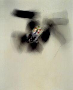 Manuel Geerinck, 'Untitled PH2107', 2007