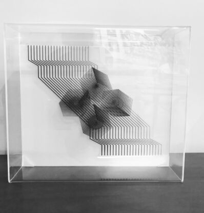 Mariana Villafane, 'Distortions'