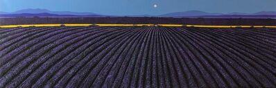 Ronnie Ford, 'Lavender dusk', 2020