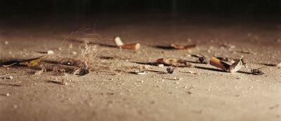Annika von Hausswolff, 'Still Life with Dead Flies', 2003