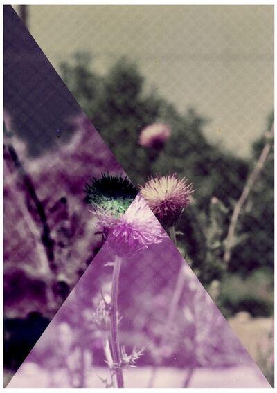 Setareh Shahbazi, 'Spectacle Days#09', 2013