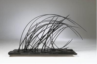 John Schwartzkopf, 'The Wave', 2012
