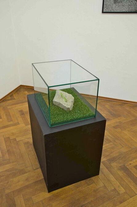 Jana Želibská, 'The Stone', 2015