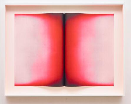 Anish Kapoor, 'Fold V', 2016