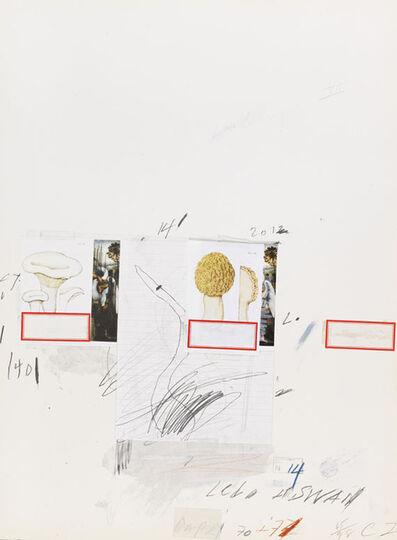 Cy Twombly, 'Natural History Part I, Mushrooms', 1974