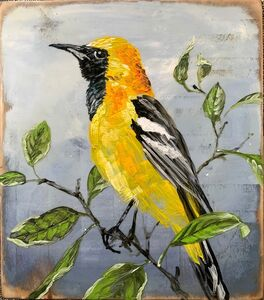 Christopher Reilly, 'Make Hooded Oriole', 2020