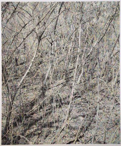 Shi Guowei, 'A Dense Forest', 2018