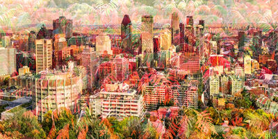 Nicolas Ruel, 'Automne (Montreal, Canada)', 2020