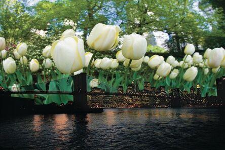 Isack Kousnsky, 'Brooklyn Bridge with Tulips ', 2013
