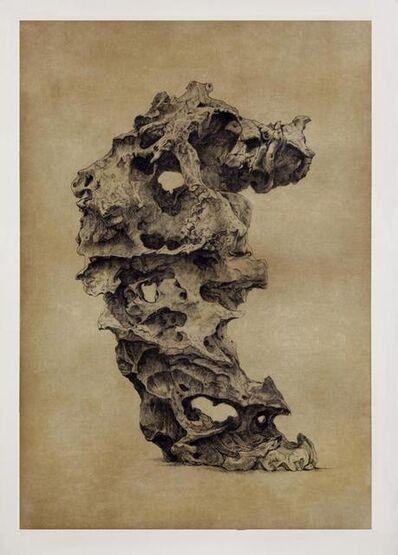 Shao Yinong, 'Objects of Nature - Langqiong', 2014