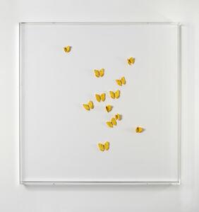 Claudio Parmiggiani, 'Untitled', 2000