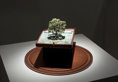 Tete de Alencar, 'Spring in Edinburgh', 2014