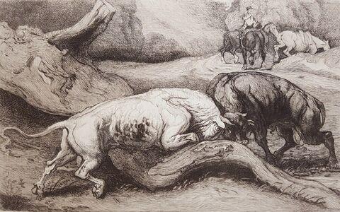 James Ward, 'Fighting Bulls', ca. 1850